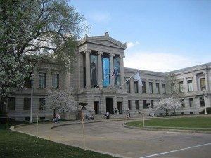 Explore the Museum of Fine Arts