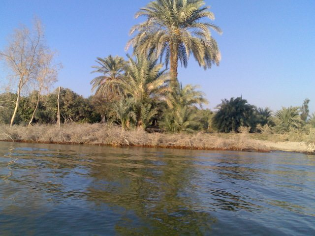 Fayoum governorate teacher of eco-tourism