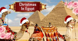 Christmas vacation in Egypt
