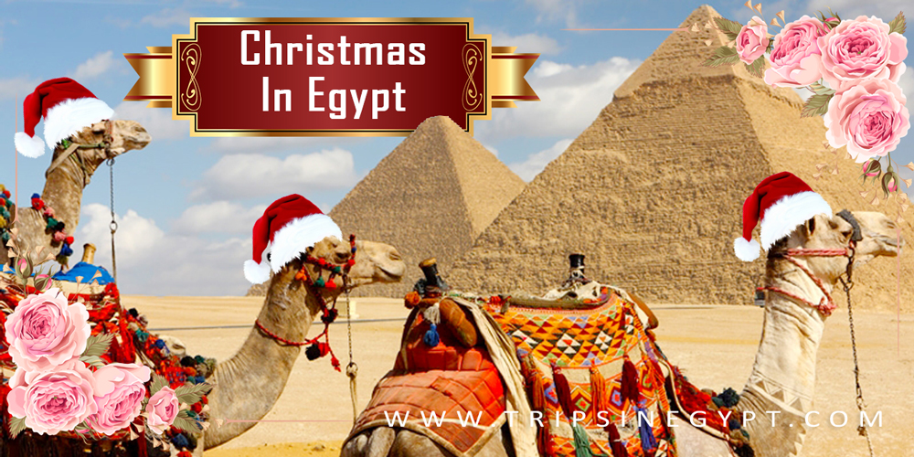 Photo of Christmas vacation in Egypt 2020