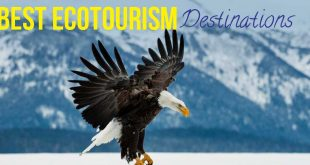 Ecotourism destinations in the world