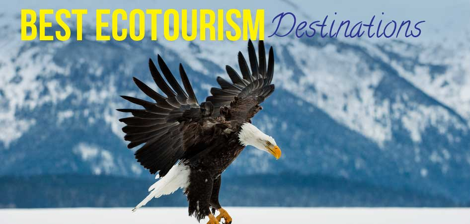 Photo of Best 6 ecotourism destinations in the world