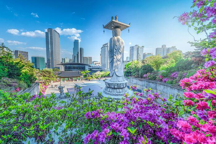 Photo of Top 4 beautiful places in Seoul