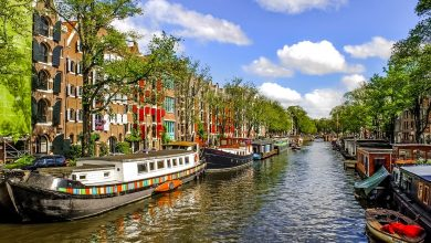 Photo of Netherlands Travel: 3 top-rated travel attractions to visit